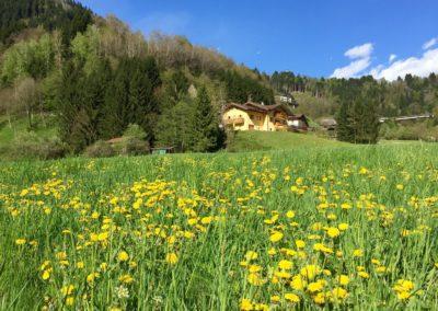 Spring at Natura Spensierata