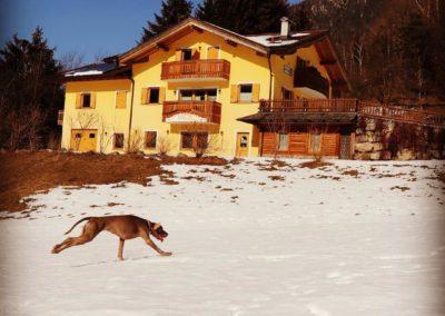 Winter at Natura Spensierata