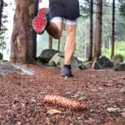 Weekend Barefoot Training – Il piede nella corsa