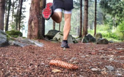 Weekend Barefoot Training – Il piede nella corsa