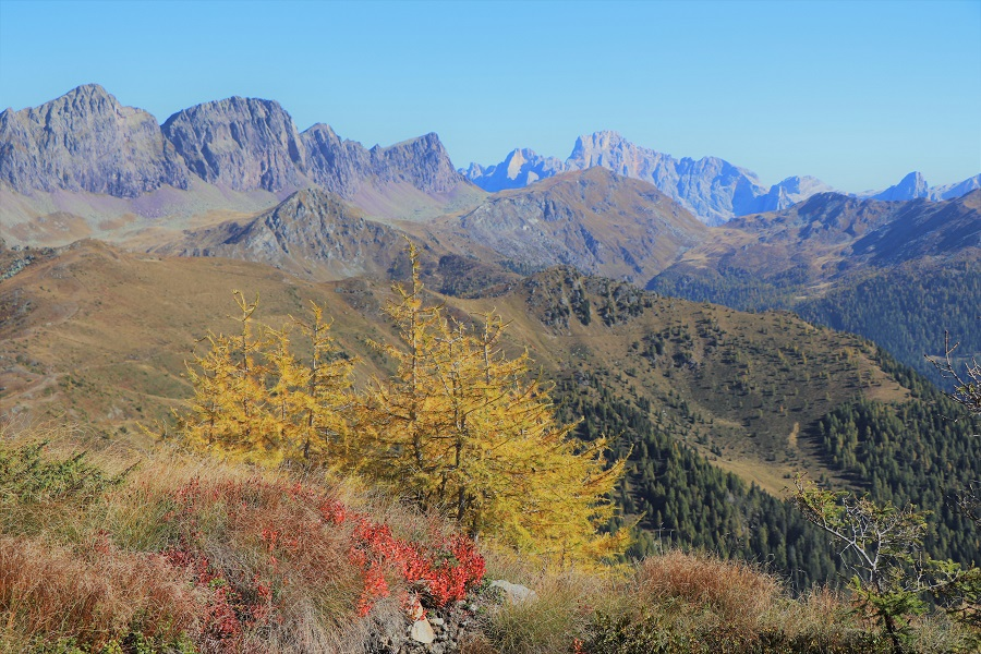 "Foliage – Weekend trekking i ""colori dell'autunno"""
