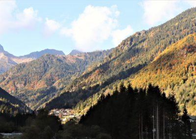 foliage-trentino-autunno-montagna-alberi